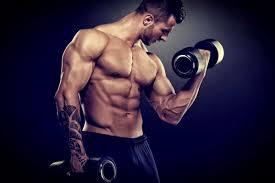 Nitro Strenght - ความคิดเห็น - ราคา เท่า ไหร่ - ของ แท้