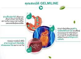 Gelmiline - สำหรับปรสิต - ความคิดเห็น - หา ซื้อ ได้ ที่ไหน - การเรียนการสอน
