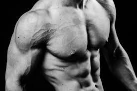 Alpha testo Boost - สำหรับมวลกล้ามเนื้อ - ของ แท้ - ดี ไหม - ผลข้างเคียง